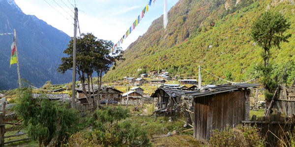 Villages de l'ethnic Limbu sur le trek Kanchenjunga